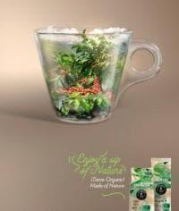 Кофе молотый Lavazza ?Tierra! Organic 340 г '3237'