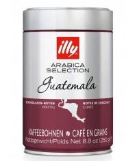 Кофе в зернах illy Monoarabica Guatemala 250г